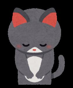 お辞儀をする猫